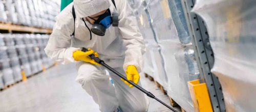 Top-Tips-Related-To-Diy-Home-Pest-Control